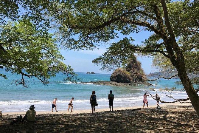 Manuel Antonio Park Private Nature Guided Tour Experience