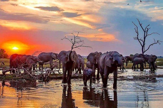 8 Days Deep Northern Tanzania Safari
