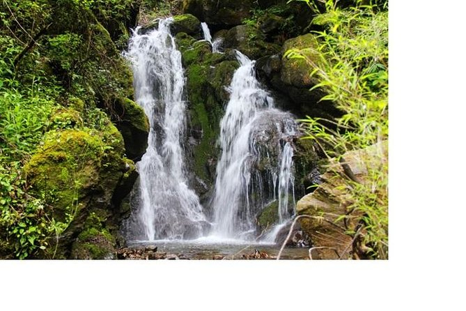 Cangshan Mountain: Alpine Meadow and Hidden Waterfalls Hike (1 Day)