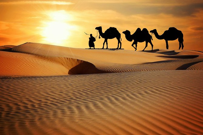 Half Day Camel Desert Safari In Jaisalmer By Get Cab India