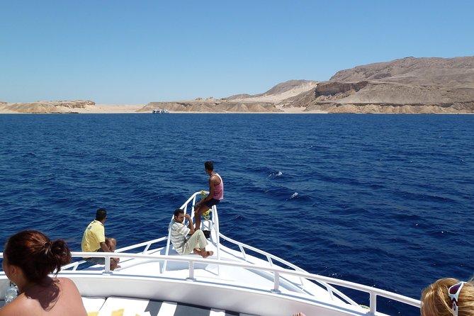 Full Day Ras Mohamed National Park & White Island Boat Trip - Sharm El Shiekh