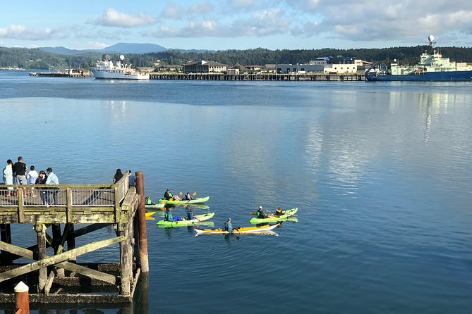 Guided Kayak Tour of Yaquina Bay - 3:00pm photo 2