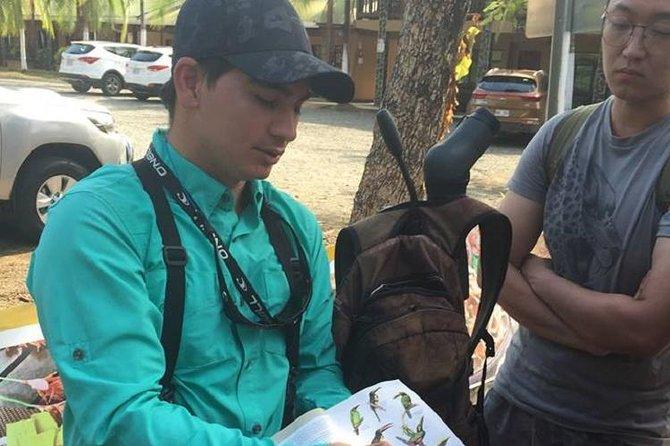 Birdwatching Tour Manuel Antonio / Esquipulas Private Tour
