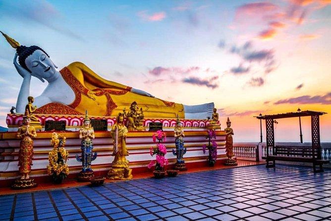 Jinshan Temple Jasmine Strings Wishing Buddha Wishes + Night Zoo Healing Tour