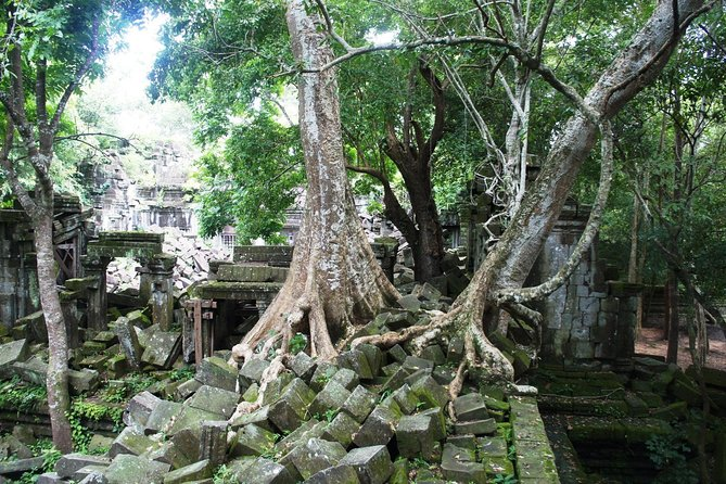Beng Mealea Temple Half-day Private tour