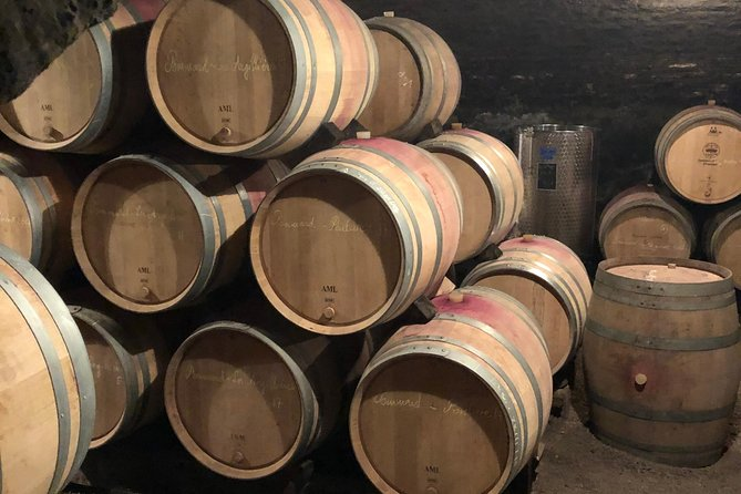 one day of shopping of the best wines in Burgundy (day-trip from PARIS)