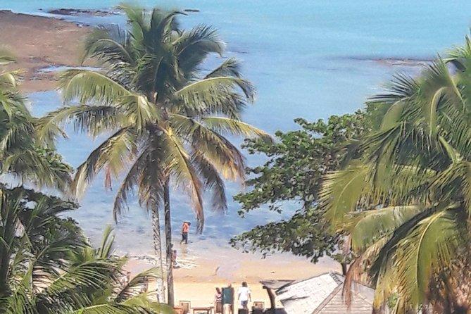 Tour to Espelho beach by Aton Guia