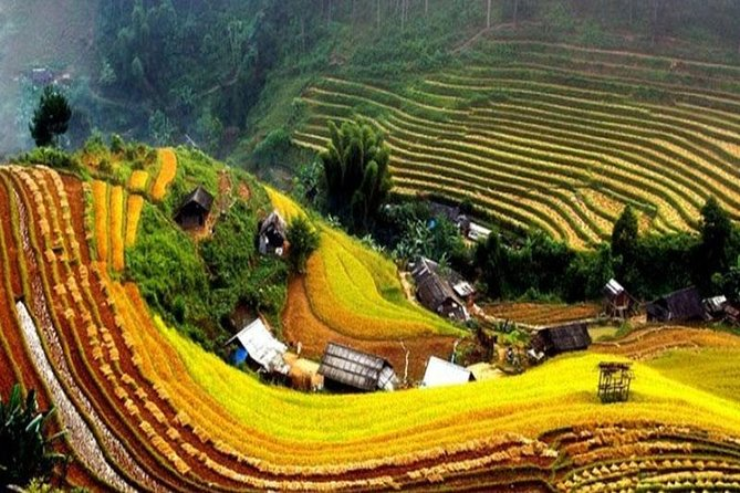 Sapa Trekking 2 Days - 1 Night, Homestay or Hotel by Sleeping Bus