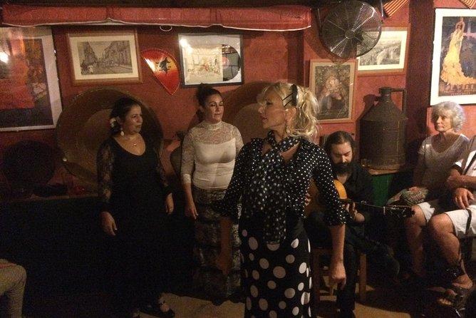Flamenco and Tapastour with a flamenco artist