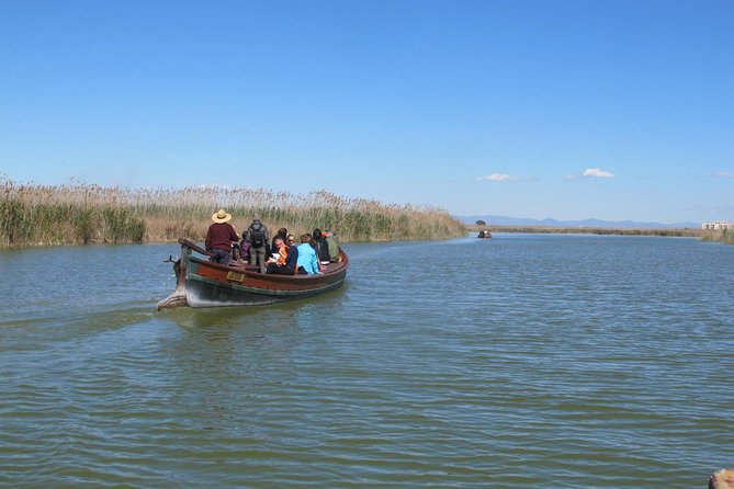 Valencia Shore Excursion: Valencia Hop-On Hop-Off and Albufera Natural Park Tour photo 5