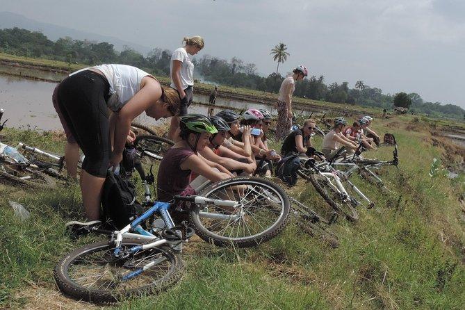 Rau Forest Bike tour