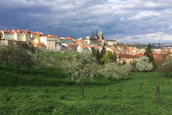 Radtour durch Prag auf Deutsch