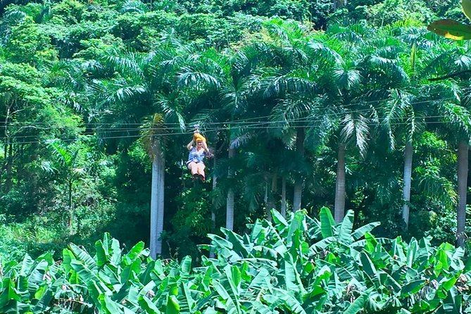 Yunque Rainforest Ziplining