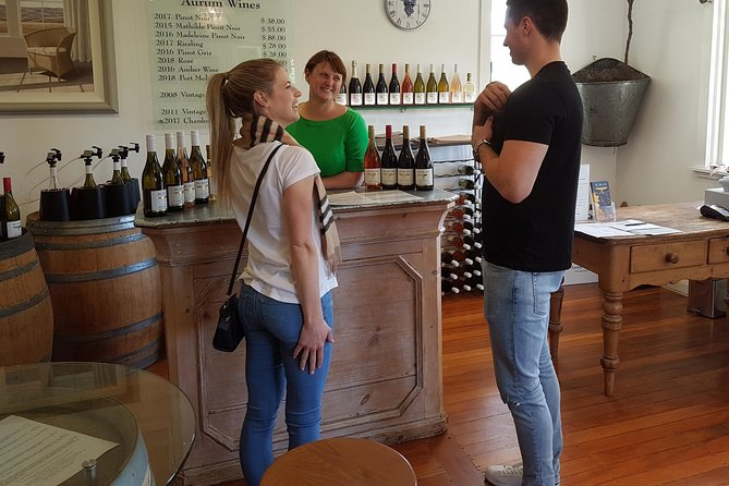 Wanaka Wine Tour by Trike