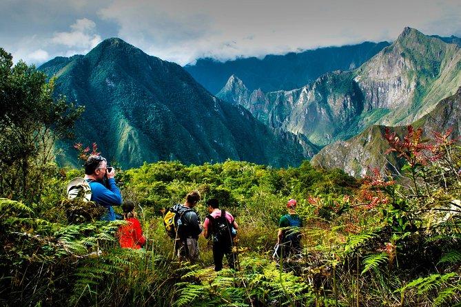 Machu Picchu Jungle Lodge Adventure