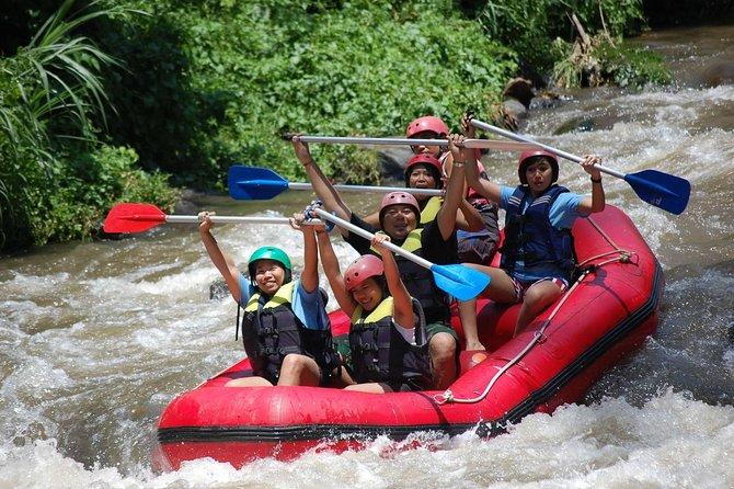 Bali Rafting - Ayung River Ubud