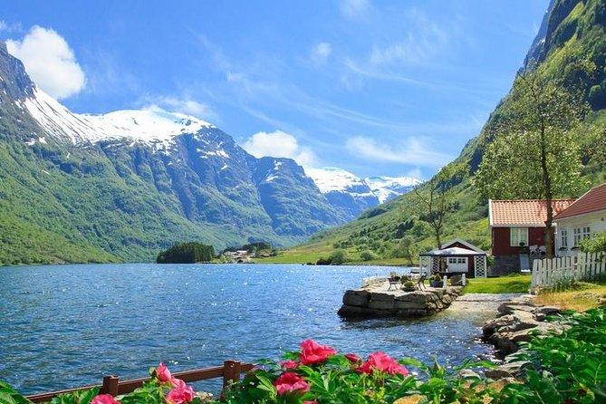 Private day tour Undredal, Flåm and Stegastein - incl Premium Fjord Cruise
