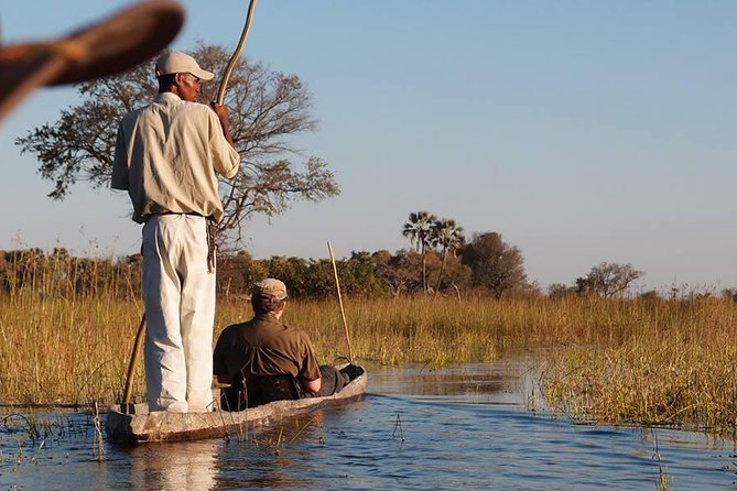 4 Day Okavango Delta Safari- By Walking Stick Safaris