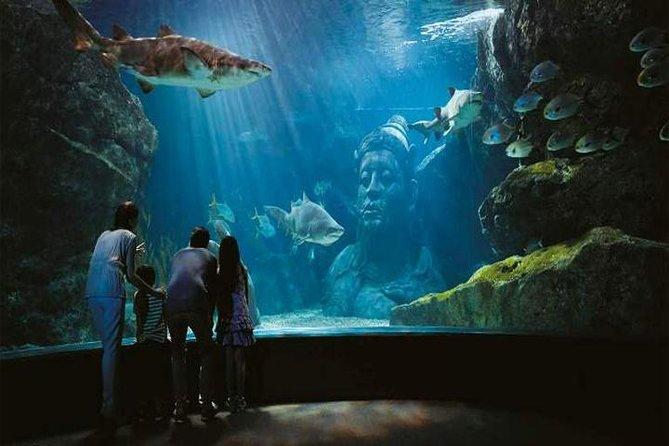 BANGKOK: Sea Life Ocean World Bangkok+Private Transfer Round Trip