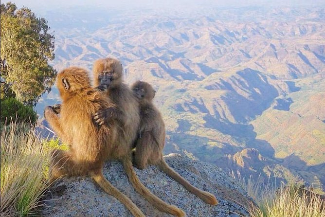7 Days Northen Ethiopia Tour