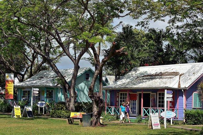 Scenic Barbados Coast To Coast 1/2 Day Tour