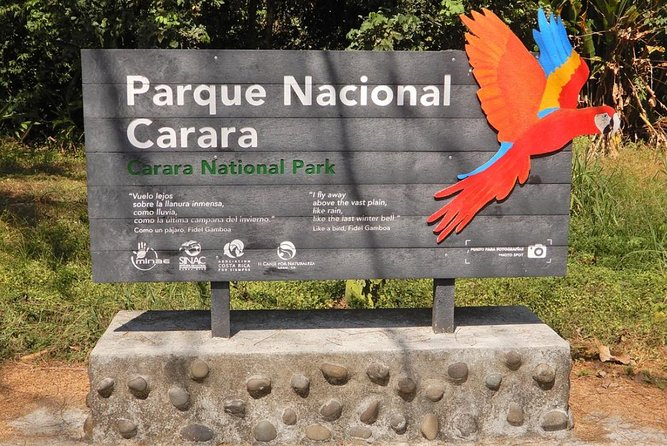 Carara National Park Birding Group Guided Tour Experience.