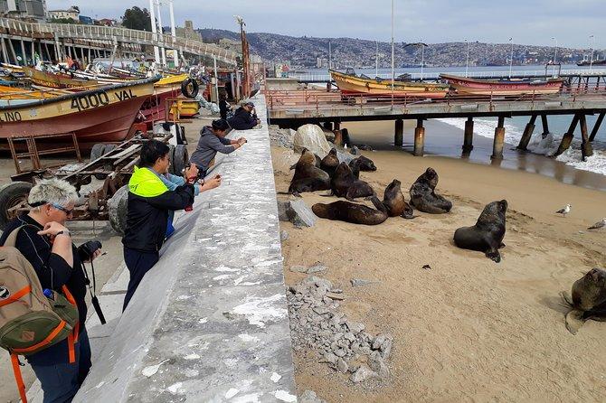 Valparaiso-Viña del Mar and Casablanca from Santiago and end in San Antonio port