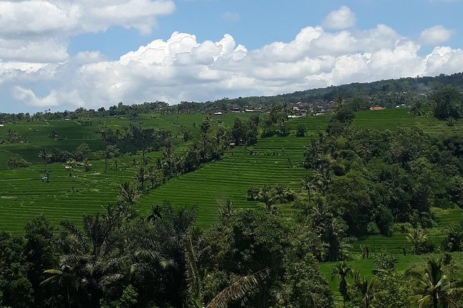 BALI WATERFALLS AND RICE TERRACE ONE DAY TRIP