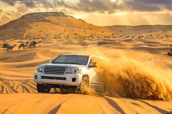 DXB Private Morning Desert Safari with Camel Ride n Sand Boarding