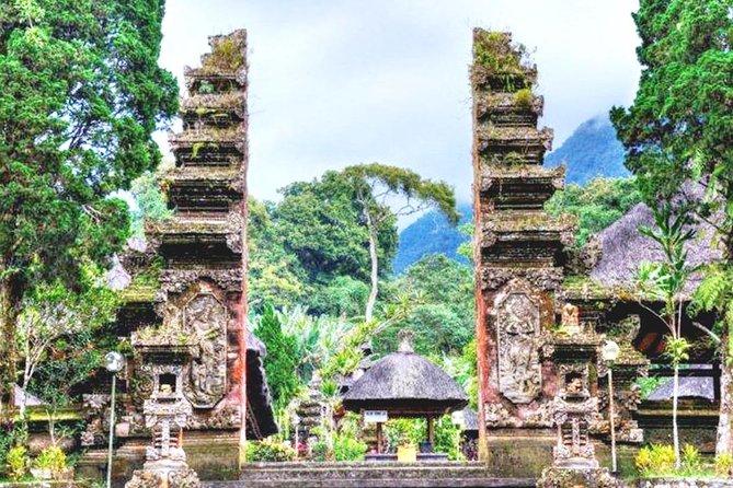 Ancient Bali Wonders of Anom Palace, Batukaru Temple & Rice Terrace