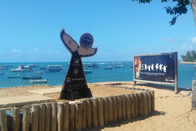 Regular Tour to Forte Beach - Leaving Salvador by Bahia Top Turismo