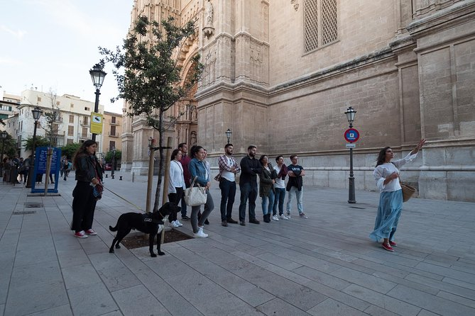 Private walking tour in Palma de Mallorca with local guides.