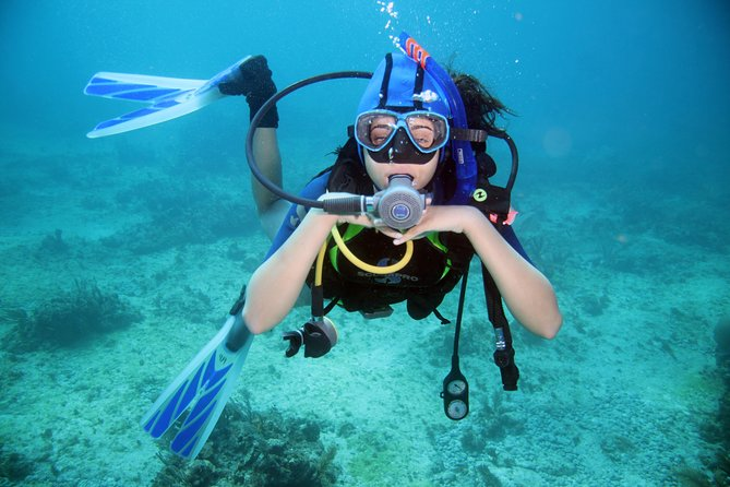 Professional Scuba Diving & snorkeling sea Trip – Hurghada