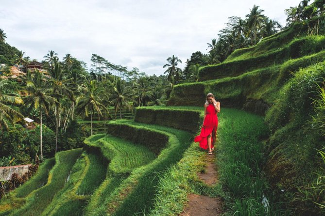 Best Day Trip in Bali