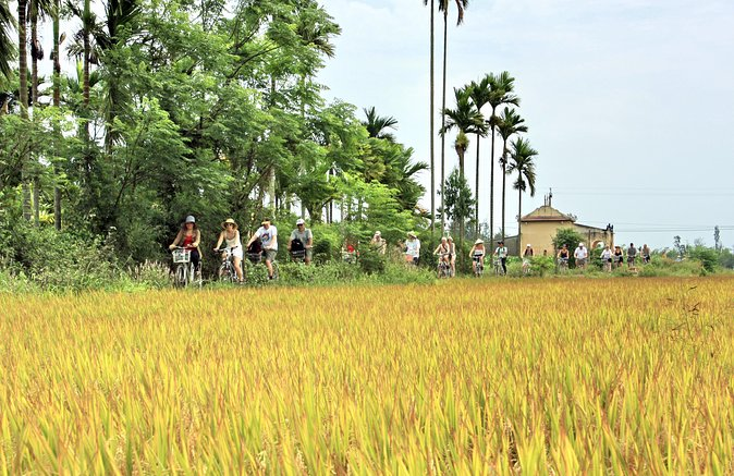 Escape Hoi An Bicycle Tour