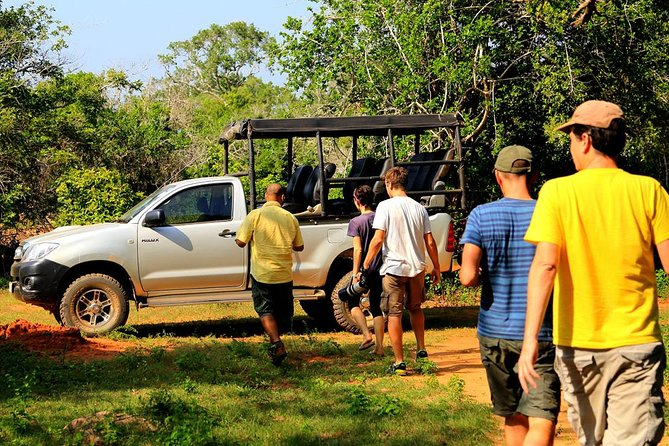 Leopard Safari Tour in Yala National Park photo 4