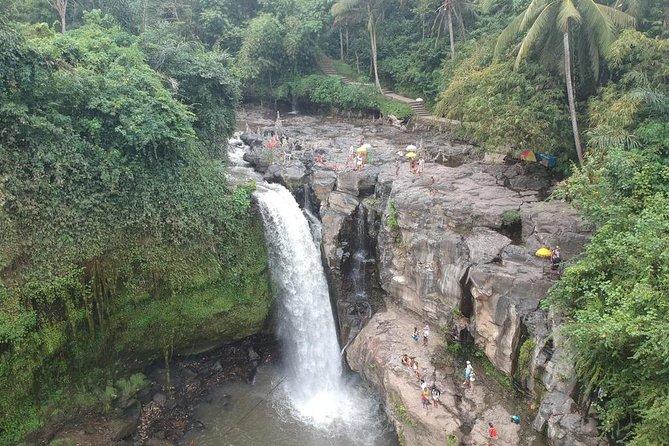 Ubud Nature, Art, and Culture Tour