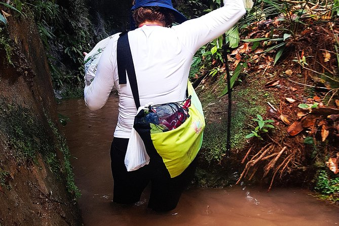 From Manaus: Amazonian Waterfalls & Caves - 14 People Max - Small Groups photo 11