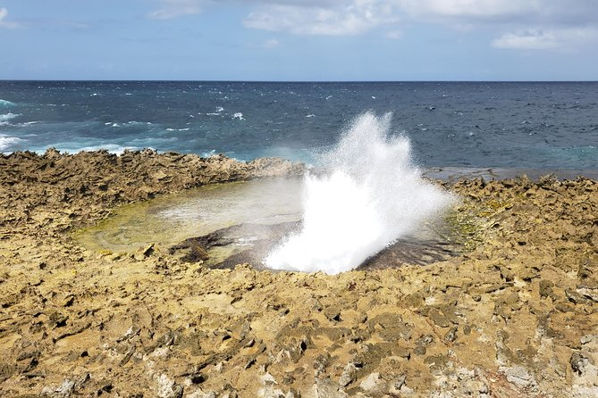 Curacao Private Tour and Activity Experience (4 up to 15 people) photo 2