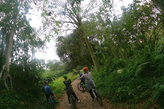 El sendero del Cacique (Nature Bike tour) photo 10