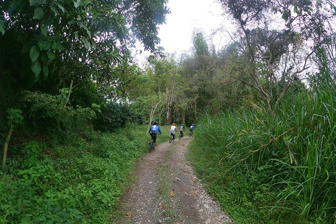 El sendero del Cacique (Nature Bike tour) photo 11