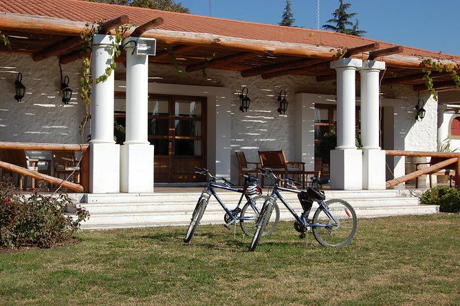Excursión en bicicleta por la región vinícola de Mendoza, Mendoza, ARGENTINA