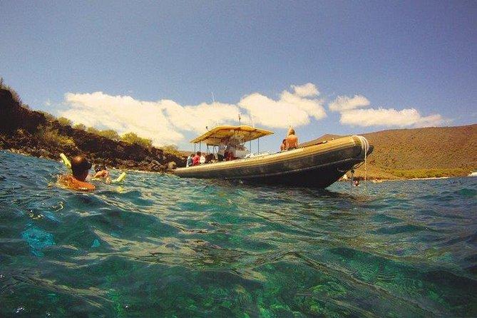Lanai Landing Adventure