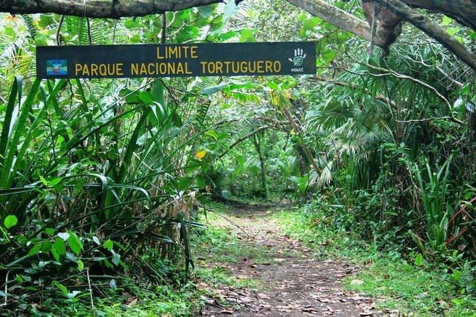 Tortuguero National Park One Day Trip