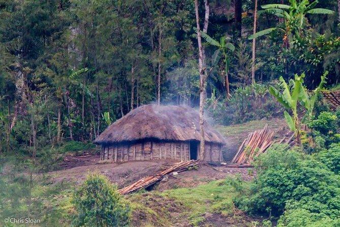 Birding & Cultural Tour - Port Moresby & Mt. Hagen