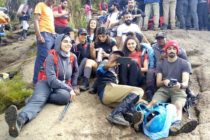 7 days Shira route Climbing Mt. Kilimanjaro