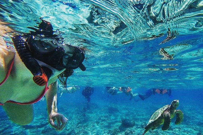 Two island (Penida & Lembongan) Snorkeling trip with Mangrove forest tour