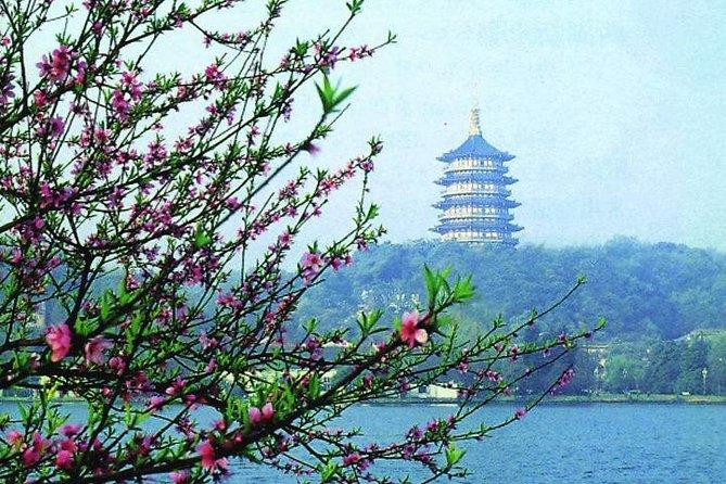 Hangzhou City Center Transfer to Shanghai Pudong Airport