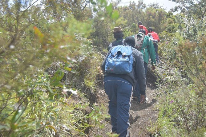 1 Day Hiking Adventure At Mt Longonot From Nairobi(minimum 2 Pax)