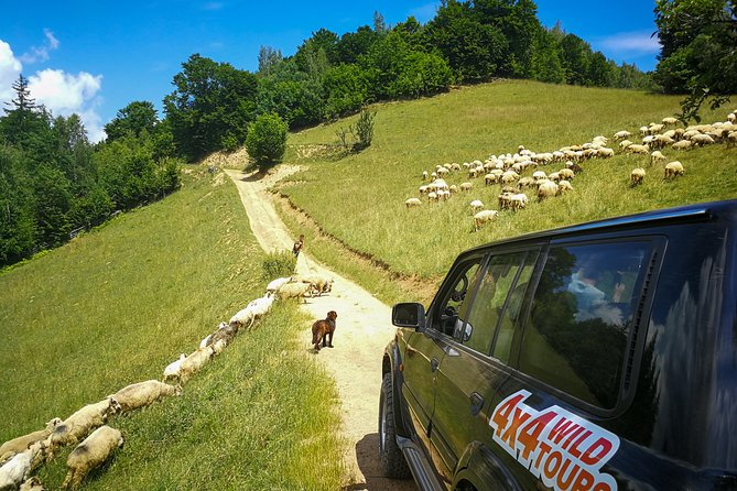 1 Day - 4x4 Private Tour in Transylvania photo 2